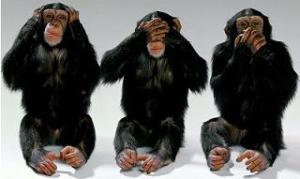 Monyet Smua Lo